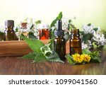 essential oils for aromatherapy | Shutterstock . vector #1099041560