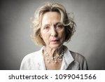 portrait of elegant lady    Shutterstock . vector #1099041566