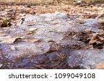 spring last ice | Shutterstock . vector #1099049108