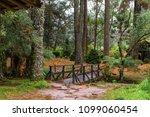 tree nature garden | Shutterstock . vector #1099060454