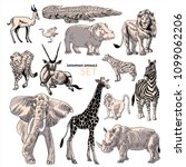 animals of african savannah.... | Shutterstock .eps vector #1099062206