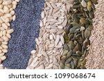 poppy seed pumpkin sunflower... | Shutterstock . vector #1099068674