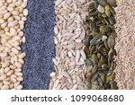 poppy seed pumpkin sunflower... | Shutterstock . vector #1099068680