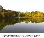 trees and bushes skirting the...   Shutterstock . vector #1099141244