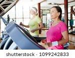 two active and helathy... | Shutterstock . vector #1099242833