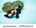 black women high heels shoes on ... | Shutterstock . vector #1099263143