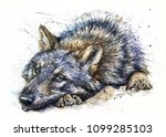 wolf watercolor animals... | Shutterstock . vector #1099285103