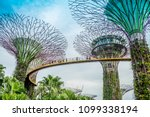 garden by the bay   singapore ... | Shutterstock . vector #1099338194