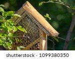 special house for useful garden ... | Shutterstock . vector #1099380350