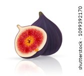 photo realistic figs. full... | Shutterstock .eps vector #1099392170