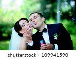 beautiful wedding couple... | Shutterstock . vector #109941590