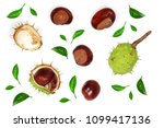 Chestnut Decorated With Green...