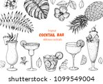 alcoholic cocktails hand drawn... | Shutterstock .eps vector #1099549004