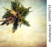 grunge palm background | Shutterstock . vector #109956719