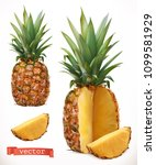 pineapple. fresh fruit 3d... | Shutterstock .eps vector #1099581929