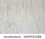 a wall of white bark beetle... | Shutterstock . vector #1099592288