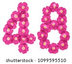 arabic numeral 48  forty eight  ... | Shutterstock . vector #1099595510