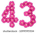 arabic numeral 43  forty three  ... | Shutterstock . vector #1099595534