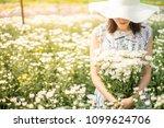 outdoor portrait of a beautiful ... | Shutterstock . vector #1099624706