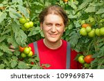 Happy Farmer picking tomato in a greenhouse - stock photo