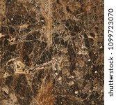marble texture hi res | Shutterstock . vector #1099723070
