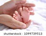 newborn concept. newborn babies ...   Shutterstock . vector #1099739513