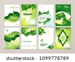 set of brochure and annual... | Shutterstock .eps vector #1099778789