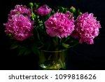 Bouquet Of Cut Gorgeous...
