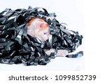 kitten redhead entangled in a... | Shutterstock . vector #1099852739