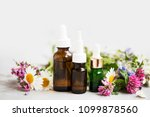essential oils bottles with... | Shutterstock . vector #1099878560