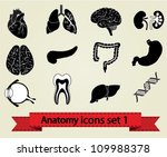 human anatomy icons parts ...   Shutterstock .eps vector #109988378