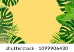 tropical fresh green leaves...   Shutterstock . vector #1099906430
