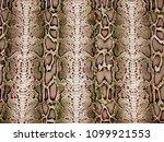 Piton Pattern  Snake Skin ...