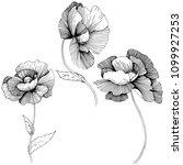 poppy. floral botanical flower.... | Shutterstock . vector #1099927253