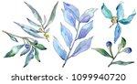 blue elaeagnus leaves in a...   Shutterstock . vector #1099940720