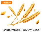 detailed wheat ears  oats or... | Shutterstock . vector #1099947356
