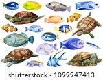 marine life  colored fish ... | Shutterstock . vector #1099947413