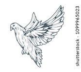 illustration of a pigeon bird | Shutterstock .eps vector #1099965023