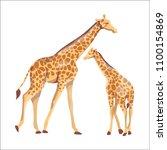 african giraffe mother and her... | Shutterstock .eps vector #1100154869