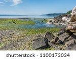 a landscape shot of a stream... | Shutterstock . vector #1100173034