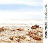 Seashells On A Beach  As...
