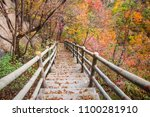 the late autumn scenery in the... | Shutterstock . vector #1100281910