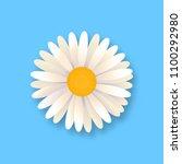 white daisy flower. chamomile... | Shutterstock .eps vector #1100292980