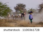people push cows on dusty road... | Shutterstock . vector #1100361728
