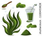 spirulina plant  powder  pills  ... | Shutterstock .eps vector #1100453828