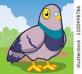 pigeon cartoon  cute animal ... | Shutterstock .eps vector #1100498786