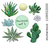 succulent cactus collection.... | Shutterstock .eps vector #1100522033