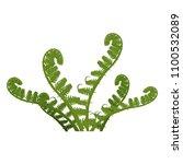 fern green leaves of plant... | Shutterstock .eps vector #1100532089