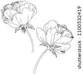wildflower peony flower in a... | Shutterstock . vector #1100532419