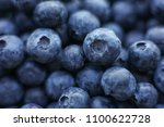 macro close up on blue large... | Shutterstock . vector #1100622728